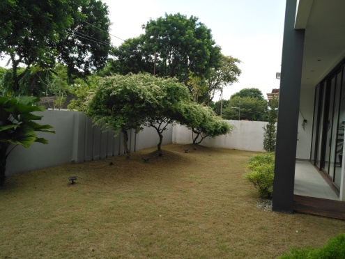Lawn space