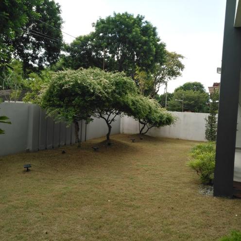 Lawn space